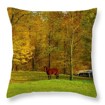 Horse In Autumn Throw Pillow by Kathleen Struckle