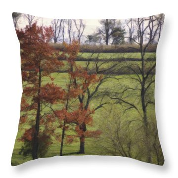 Horse On The Pasture Throw Pillow by Trish Tritz