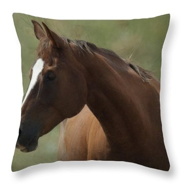 Horse Painterly Throw Pillow by Ernie Echols