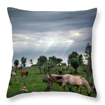 Horses Eating Throw Pillow by Carlos Caetano