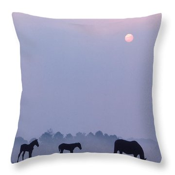 Horses In Kentucky Throw Pillow by Frederica Georgia and Photo Researchers