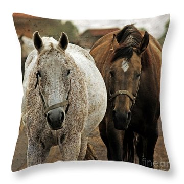 Horses On The Paddock Throw Pillow