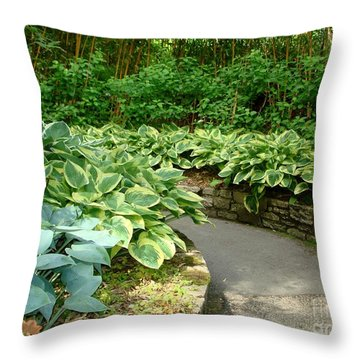 Throw Pillow featuring the photograph Hosta by Katy Mei