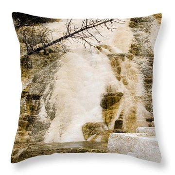 Throw Pillow featuring the photograph Hot Spring Pine by J L Woody Wooden