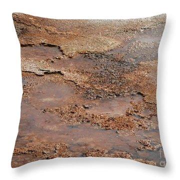 Hot Springs Abstract Throw Pillow by Sabrina L Ryan