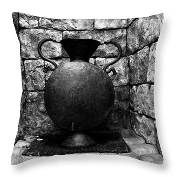 House Of Serpents Throw Pillow by David Lee Thompson