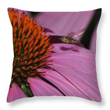 Hoverfly Hovering Over Cornflower Throw Pillow