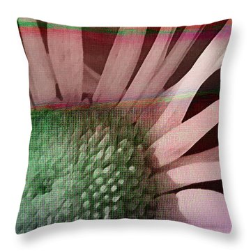 How The Sun Rose Throw Pillow by Bonnie Bruno