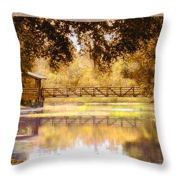 Howe's Bayou Throw Pillow by Ginny Schmidt