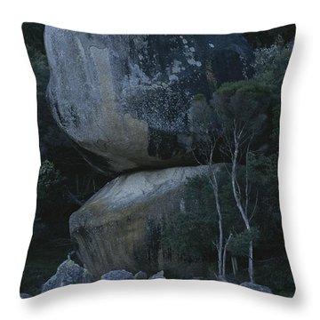 Huge Granite Boulders Encrusted Throw Pillow