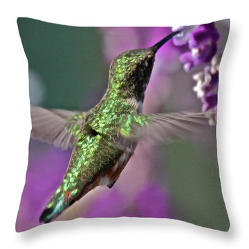 Hummer Throw Pillow by Paul Marto