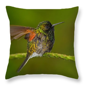Humming Along Throw Pillow by Tony Beck