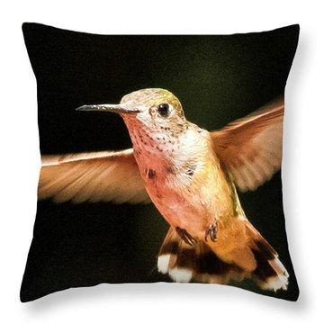 Throw Pillow featuring the photograph Hummingbird  by Albert Seger