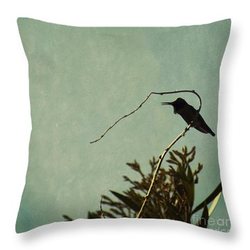 Hummingbird On Winter Wisteria Throw Pillow