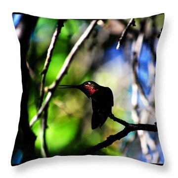 Throw Pillow featuring the photograph Hummingbird Resting On A Twig by Susanne Still