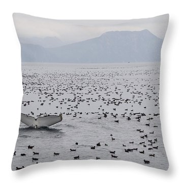 Humpback Whale Diving Amid Seabirds Throw Pillow by Flip Nicklin