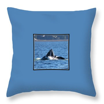 Humpback Whale Throw Pillow by Pamela Walrath