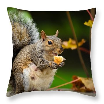 Hungry Momma Throw Pillow