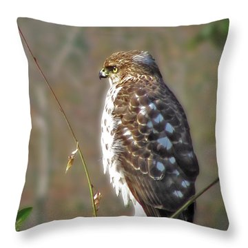 Hunter In A Farmer's World Throw Pillow by Laura Brightwood