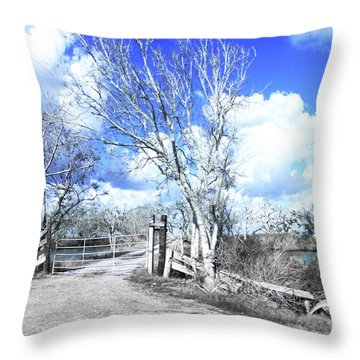 Throw Pillow featuring the photograph Hwy 82 Coastal Louisiana by Lizi Beard-Ward