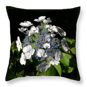 Throw Pillow featuring the digital art Hydranga by Claude McCoy