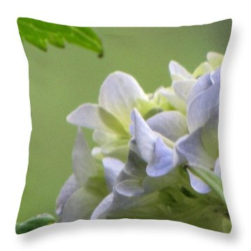 Hydrangea Blossom Throw Pillow by Katie Wing Vigil