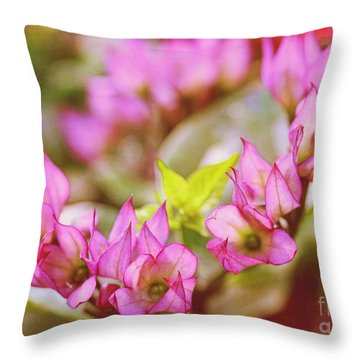 Hydrangea Throw Pillow by Judi Bagwell