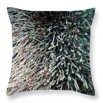 Hydrothermal Tubeworms Throw Pillow