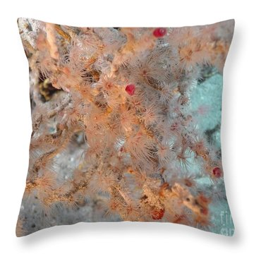 Hydrothermal Vent Tubeworms Throw Pillow by Science Source