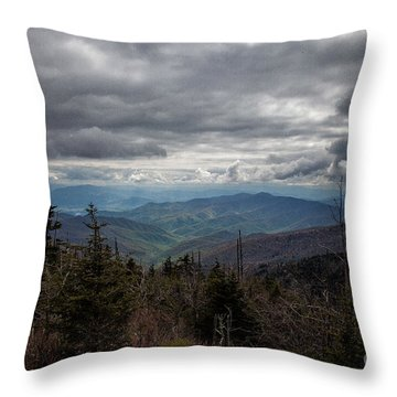 I Can See For Miles Throw Pillow by Ronald Lutz