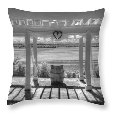 I Love Wine Throw Pillow by Jane Linders