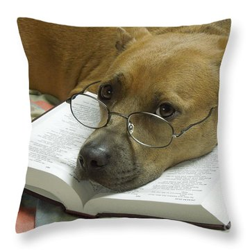 I Read My Bible Every Day Throw Pillow by Renee Trenholm