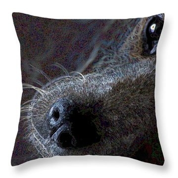 I See You Throw Pillow by One Rude Dawg Orcutt