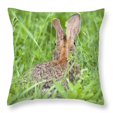Throw Pillow featuring the photograph I Still See You by Jeannette Hunt