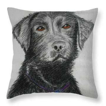 I Want To Play Throw Pillow by M Valeriano