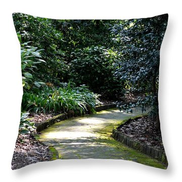 I Want To Walk With You Throw Pillow by Maria Urso