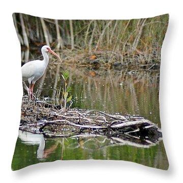Ibis 2 Throw Pillow by Joe Faherty