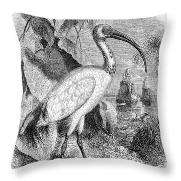 Ibis Throw Pillow by Granger