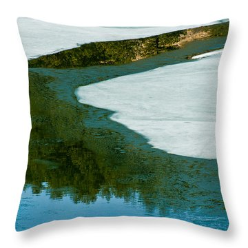 Ice Borders Throw Pillow by Colleen Coccia