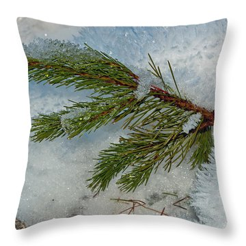 Throw Pillow featuring the photograph Ice Crystals And Pine Needles by Tikvah's Hope