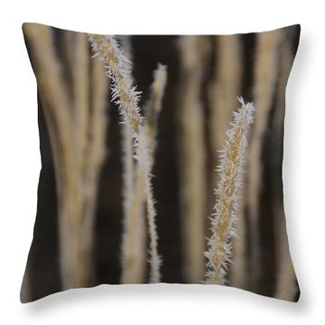 Ice Crystals On Tall Grass Throw Pillow by Mick Anderson