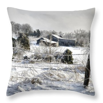 Ice Storm - D004825a Throw Pillow by Daniel Dempster