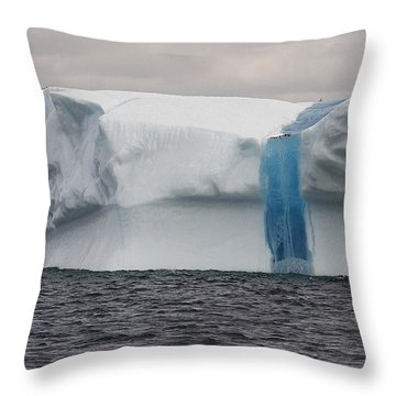Iceberg Throw Pillow by Eunice Gibb