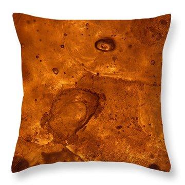 Icecape Throw Pillow