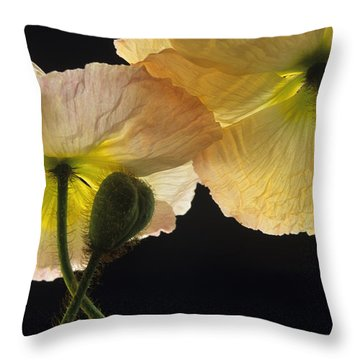Iceland Poppies 2 Throw Pillow