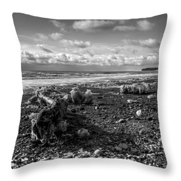 Throw Pillow featuring the photograph Icy Alaskan Beach by Michele Cornelius