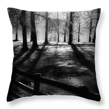 Icy Morning Throw Pillow