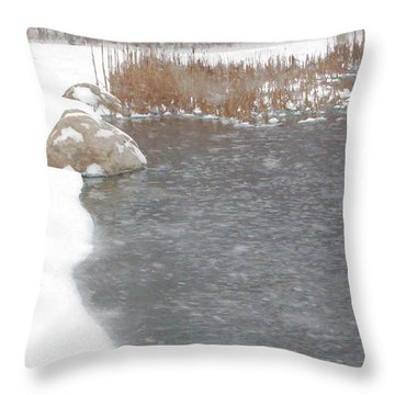 Throw Pillow featuring the photograph Icy Pond by John Crothers