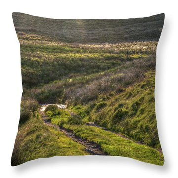 Icy Track Throw Pillow