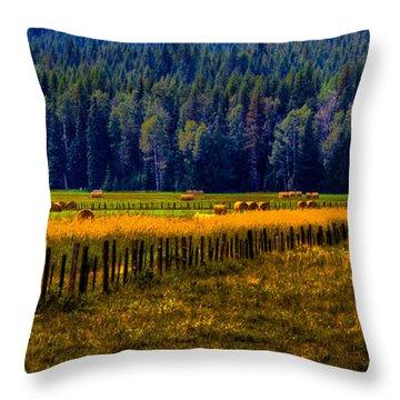 Idaho Hay Bales  Throw Pillow by David Patterson